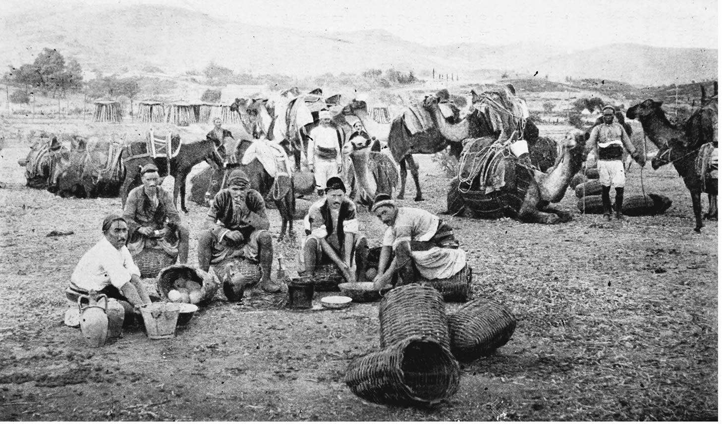 1843-1846 Tarihli Nüfus Defterlerine Göre Honamlı Aşireti